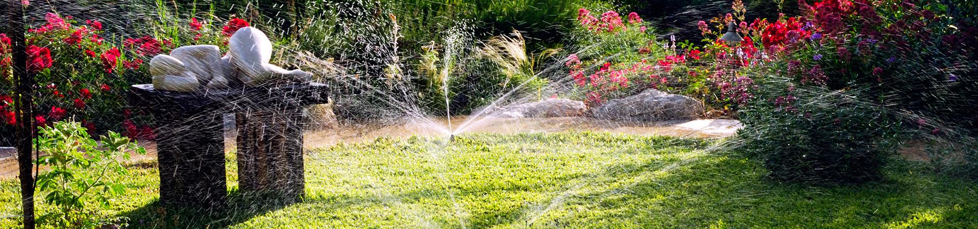 Contactez mille et un jardins versailles for Entretien jardin versailles