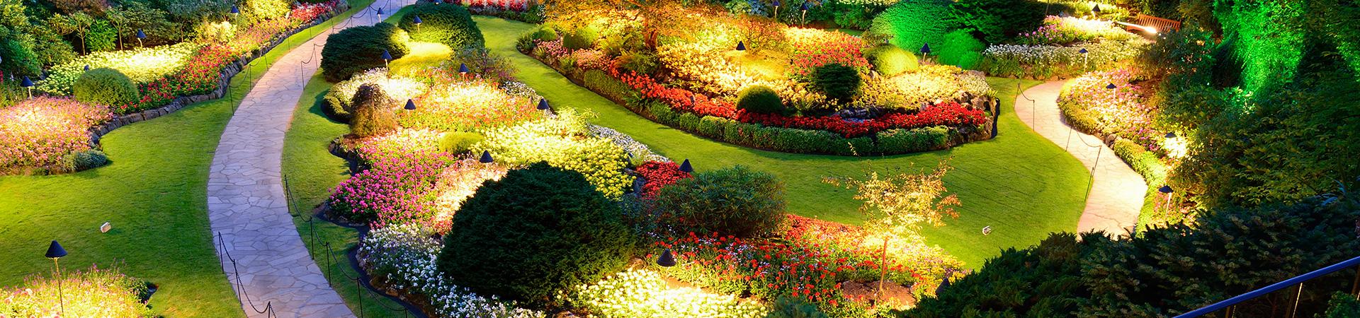 Entretien de jardins et de parcs versailles dans les yvelines for Entretien de jardins